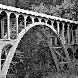Haceta Bridge by Kurt Bailey - Black & White Buildings & Architecture