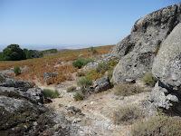 Sus piedras de granito solo son accesibles a pie tras cruzar un terreno de helechos