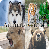 Free Animals Sounds and Names APK for Windows 8