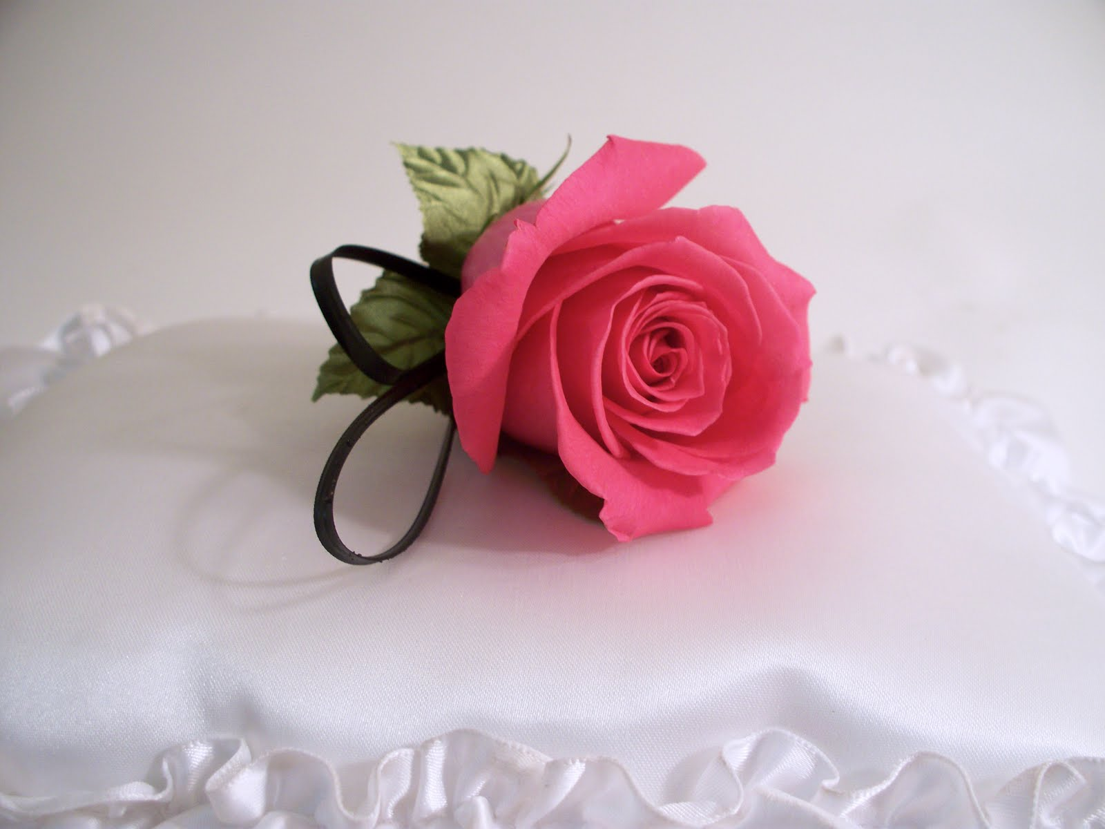 A lovely hot pink rose with
