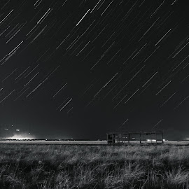 Star trail by Lazar Brajovic - Landscapes Starscapes ( exposure, grass, vintage, black and white, landscape, photo, photography, lights, sony, startrail, sky, nature, stars, dark, clarity, train, night, long exposure, star trail, starscape, mist )