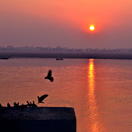 red dawn by Arnab Bhattacharyya - City,  Street & Park  Neighborhoods