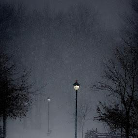 Winter Wonderland by Kristina Servant - City,  Street & Park  Street Scenes