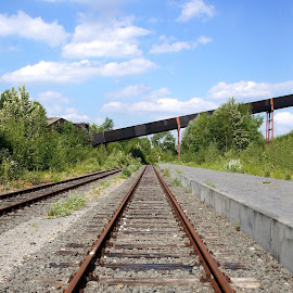 Zollverein railway track by Anita Berghoef - Transportation Railway Tracks ( essen, zollverein, railway, rail, germany, perspective, places of interest, architecture, railway track )