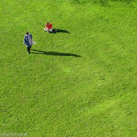 LES SOLITUDES DU PARC by Marinka Pockaj - City,  Street & Park  City Parks ( ambiorix, marinka, grass, bruxelles, parc )