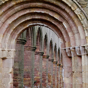 Arches by Hayley Warriner - Buildings & Architecture Other Interior ( contrast, abby, old, walls, church, arches, ruin's )