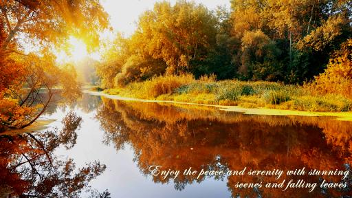Autumn Ambience HD - screenshot
