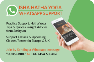 whatsapp-support-revised-design-revised