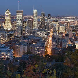 Montreal  by Michaela Firešová - Buildings & Architecture Public & Historical ( lights, montreal, skyscrapers, city center, night )