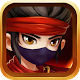 Ninja: The Last Shadow