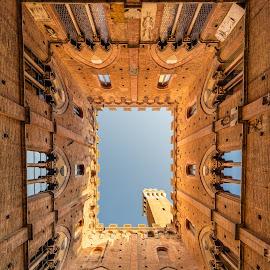 Piazza Del Campo by Domenico Annunziata - Buildings & Architecture Public & Historical ( nikon, italia, nikon d610, toscana, samyang 14m, siena, tuscany, samyang, italy )