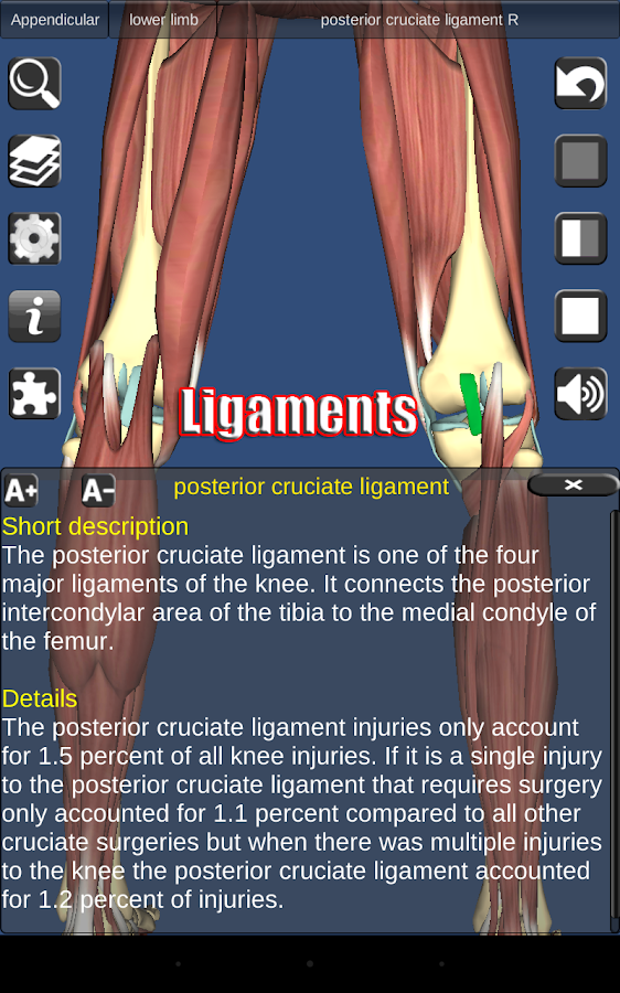 3D Anatomy Screenshot 15