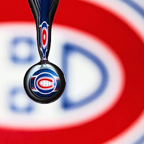 by Connie Publicover - Artistic Objects Other Objects ( water drop refraction of a hockey logo )