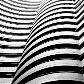Wave Wall by Justin Lee - Abstract Patterns ( abstract, monochrome, lobby, black and white, art, minimalism, minimal, architecture, geometry, modern, atrium, symmetrical, justin adam lee, contemporary, hotel, symmetry, geometrical, wall )