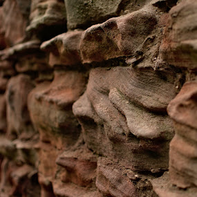 At Bamburgh Castle by Dunstan Vavasour - Abstract Patterns ( worn, erosion, sandstone, stone, stone wall, weathering, wall, weathered,  )