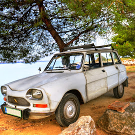 ami 8 by Mara R. Sirako - Transportation Automobiles ( car, old, old car, ami, tree, automobile, sea, summer, auto, oldtimer, citroen, ami 8 )