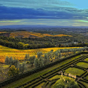 Tuscan Landscapes by Jundio Salvador - Landscapes Prairies, Meadows & Fields ( sienna, tuscany, sinalunga, fall, meadows, landscape, italy, fields )