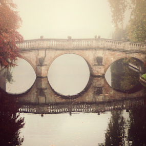 Clare Bridge  by Stephanie Veronique - Buildings & Architecture Architectural Detail ( reflection, structure, autumn, forg, bridge, architecture, cambridge )