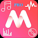Mp3 Music Lyrics Player Offline Pro-Lyrics Display
