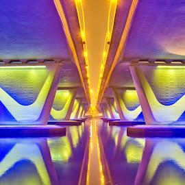 Neon Bridge by Gabz Alvin - City,  Street & Park  City Parks ( night photography, dubai, neon, architectural detail, long exposure, architecture, bridge, night shot, al garhoud bridge, nightscape )