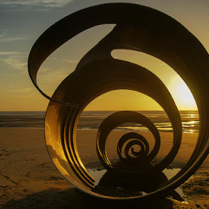 seashell 007.jpg