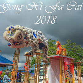 Chinese new year lion dance part eight by Daimasala Abdullah - Typography Captioned Photos ( chines motif, chines new year 2018, plum blossom, illustrations, promotion, blossom, chines, lantern, free, cliparts, calligraphy, vector, layout, festival, year, flowers, design elements, banner, china, 2018, chines painting, chines pattern, pop up baner, marketing, backgrounds, advertisement, seasons greetings, discount, sale, holiday, new, chinese decoration, red, golden frame, prospenty, poster, religon, packet, shopping, celebration, voucher, chinese new year, design, chinese calligraphy )