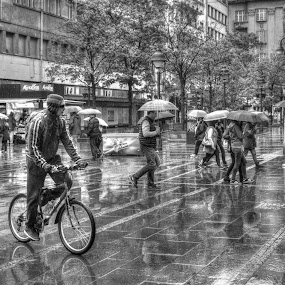 on the street by Dragan Nikolić - City,  Street & Park  Street Scenes