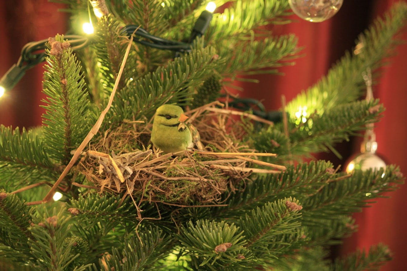 My Christmas Tree comes with a birds nest!