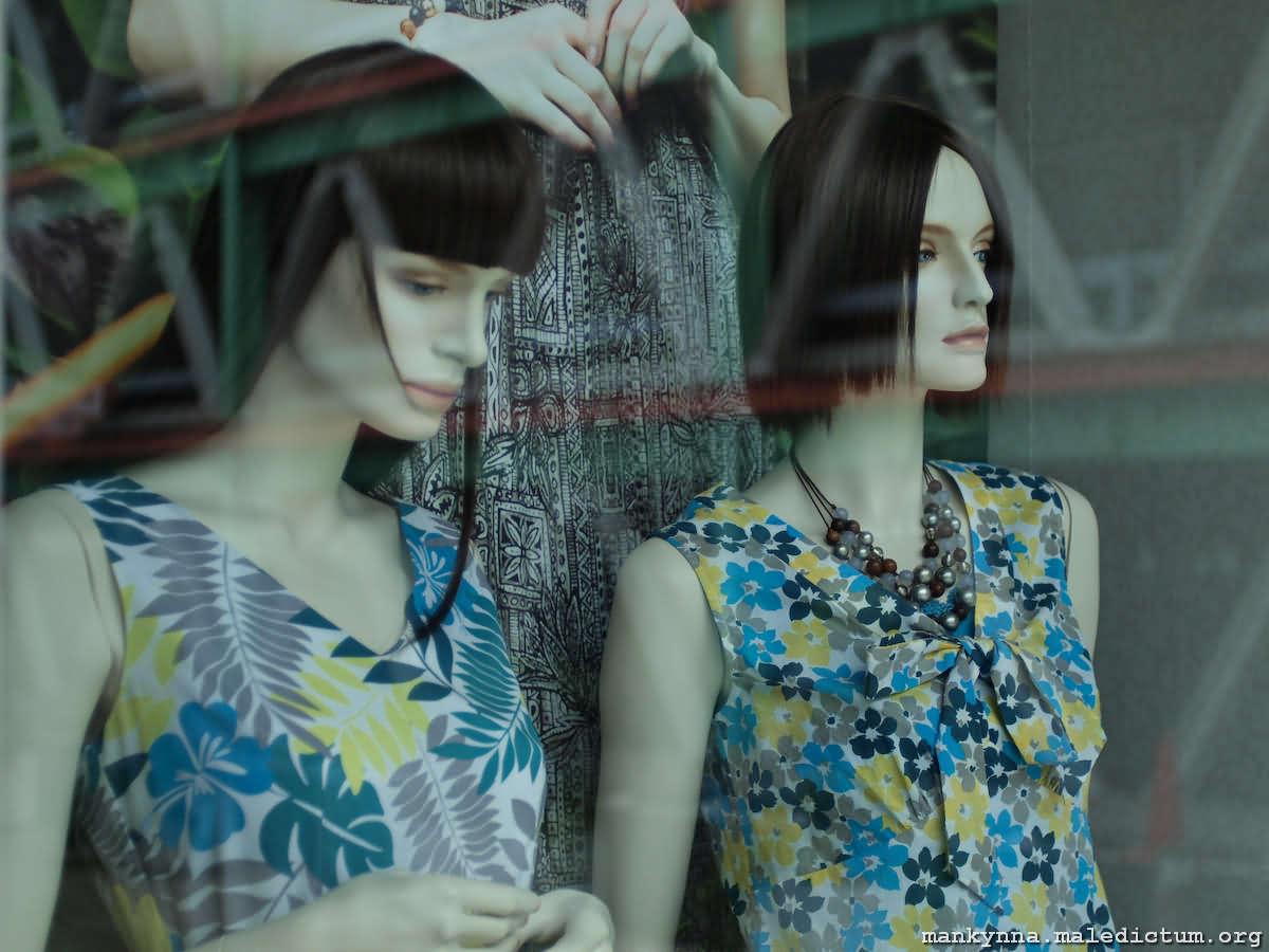 Две красотки за стеклом