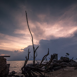 Stranded on the beach by Muhamad Ramlan Setiawan - Landscapes Beaches ( indonesia, balikpapan, beach, landscape, menepora )