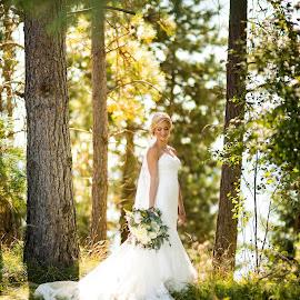 Glowing trees by Casey Bebernes - Wedding Bride ( pnw, wedding, dress, white, light )