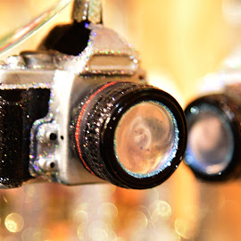 Camera Ornaments  by Lorraine D.  Heaney - Artistic Objects Other Objects