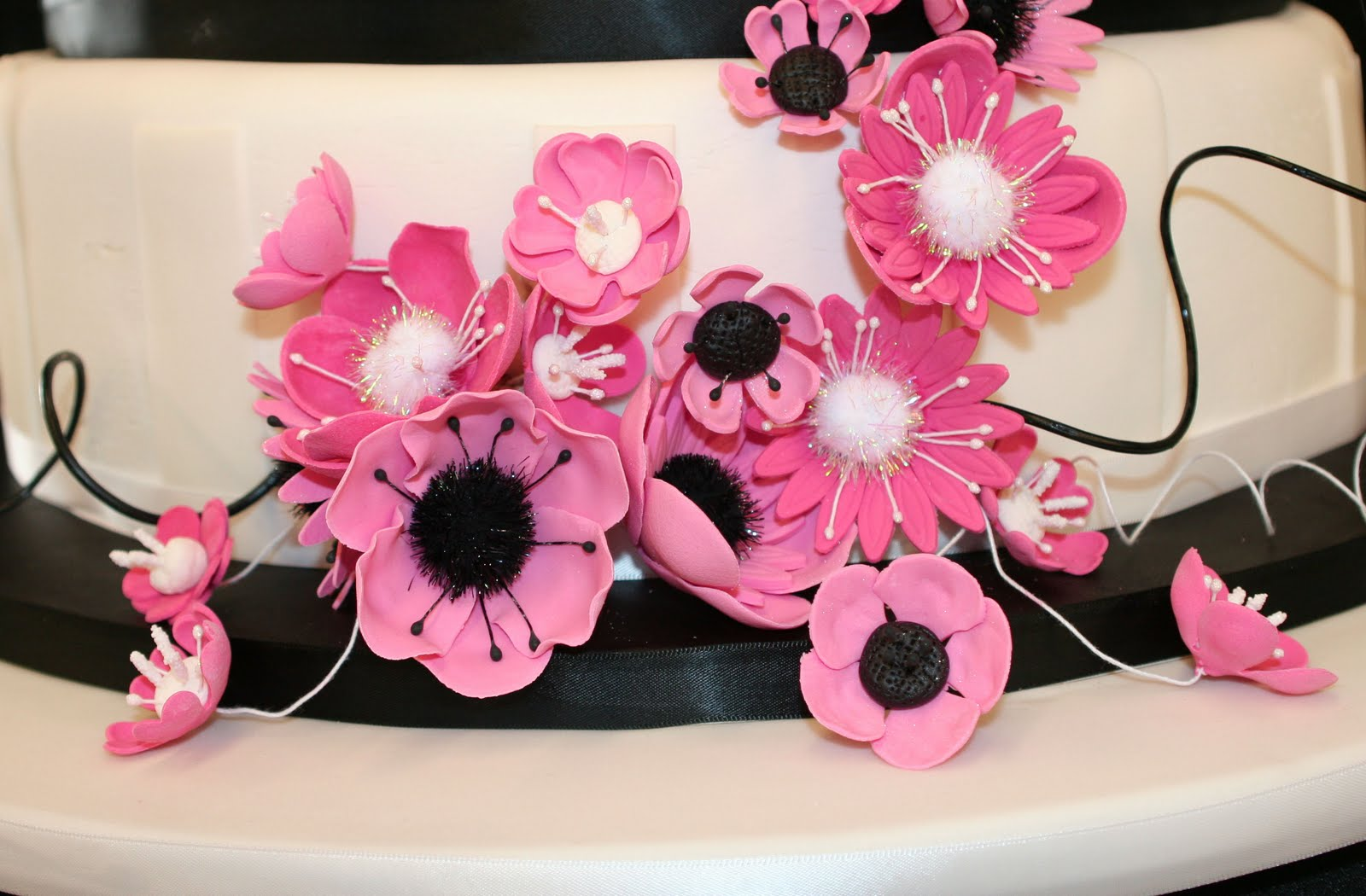 Scottie\'s blog: A Black, White, and Hot Pink