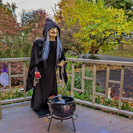 Brewing some magic by Ruth Sano - Public Holidays Halloween ( witch, decorations, brewing, halloween )