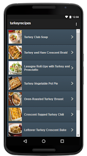 Turkey Recipes - screenshot