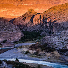 by Steven Aicinena - Landscapes Travel ( winter, wildlife, big bend national park, landscape )