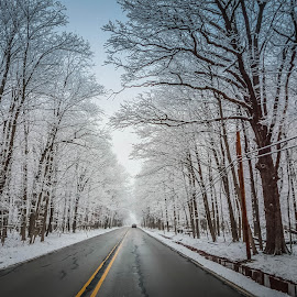 first snow by Sunil Pawar - Transportation Roads ( nowhere, black and white, no person, white, first snow, forest, beauty, travel, road, landscape, preserve, winter, cold, nature, season, snow, trees, potawatomi, perspective, chicago )