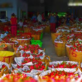 by Khải Trần - City,  Street & Park  Markets & Shops