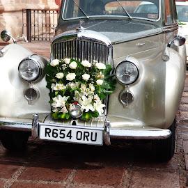 CARROZA NUPCIAL by Jose Mata - Wedding Other