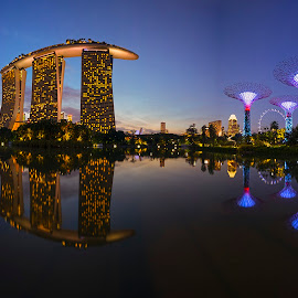 by Gordon Koh - City,  Street & Park  City Parks ( reflection, garden by the bay, supertrees, blue hour, super trees )