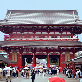 Sensoji by Mark Lendacky - Buildings & Architecture Public & Historical ( temple, umbrellas, japan, tokyo, rain )
