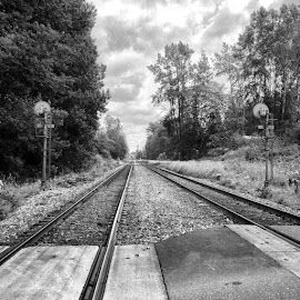 Railroad Dreamer 77 by Ernie Kasper - Instagram & Mobile iPhone ( lights, instagram, black and white, railroad, scenery, landscape, bnw, discovery, warning )