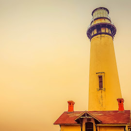 Pigeon Point Light House by Sunil Pawar - Buildings & Architecture Other Exteriors ( pigeon, america, california, no person, beautiful, lighthouse, sea, rocks ·, beach, tallest, landscape, coast, point, nature, sunset, scene, weather, light )