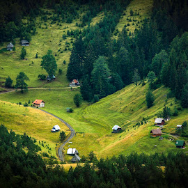 Village by Nenad Borojevic Foto - Landscapes Travel ( grassland, bowline, houses, mountain, grazing, wood, hous, forest, meadows, sheep-run, drass, pasture, tara, village, meadow )