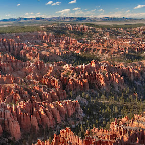 Bryce Canyon by Clement Stevens - Landscapes Travel ( clouds, mountains, red, formations, canyon, hoodoo, rock, bryce canyon, panorama )