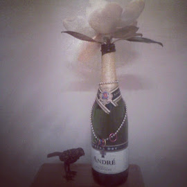 Flowers and champagne by Alice-in Wonderland - Instagram & Mobile Android ( bird, champagne, shadow, bottle, flowers )