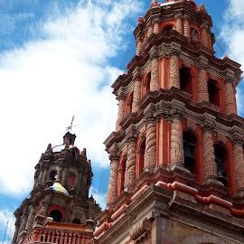 CATEDRAL DE SAN LUIS POTOSI by Jose Mata - Buildings & Architecture Public & Historical