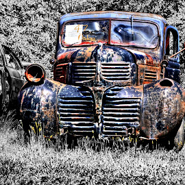 '47 Dodge by JEFFREY LORBER - Transportation Automobiles ( vintage, lorberphoto, rust 'n chrome, dodge, rusty, rust, abandoned )