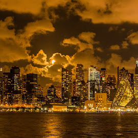 NY City Skyline by Werner Ennesser - Buildings & Architecture Architectural Detail ( ny city skyline )