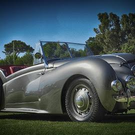 Silver Car by Ana Paula Filipe - Transportation Automobiles ( car, old, silver, antique, convertible )